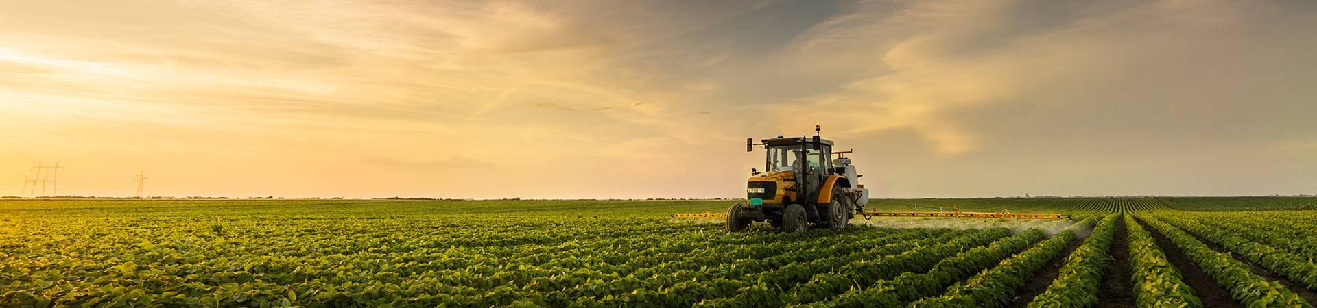 Easygoing գյուղատնտեսական վարկ